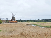 CLEY WINDMILL AND REED BEDS