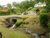Landscaped garden in Scotland.(challenge)