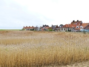 CLEY VILLAGE AND REED BEDS