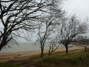 View towards Levington Marina