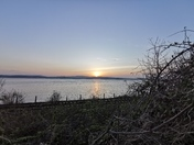 My last walk along the Exe Estuary before the lockdown