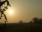 Spring Morning in the Norfolk Countryside