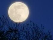 Full moon photos