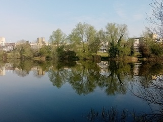 Reflections on the UEA broad in Norwich