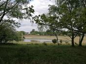 East Wretham Reserve