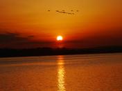 evening estuary walk