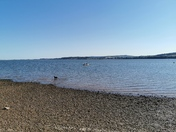 Lovely Lympstone