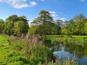 Falcon Meadow in Ditchingham