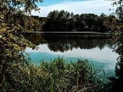 UEA LAKE NORWICH