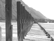 Project 52 - Week 26 - Leading Lines
