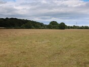 Flatford on the 1st of July